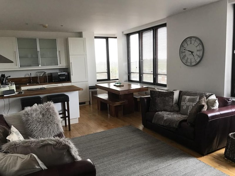 City Center Apartment, holiday rental in Swindon