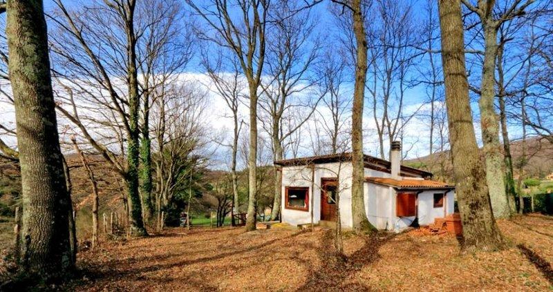 Delizioso chalet nel bosco, vista lago, holiday rental in Trevignano Romano