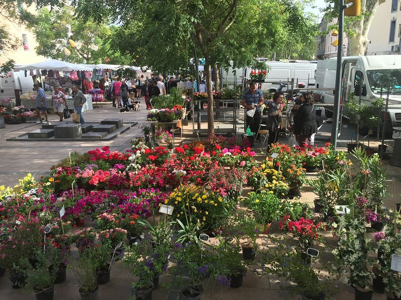 Don't miss the weekly market day, steps away from the house, on Thursday