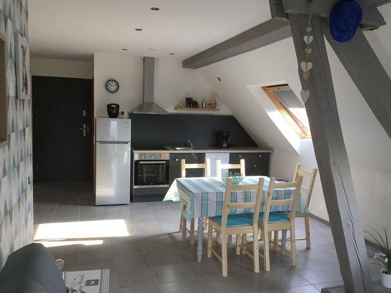 Gîtes Les Mésanges 2 à 9 personnes - Lohr, holiday rental in Petersbach