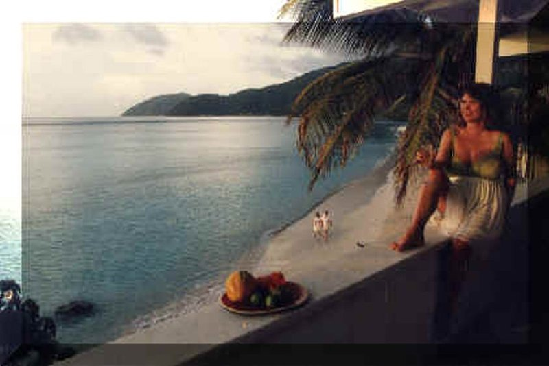 Chateau Relaxeau Caribe, holiday rental in Carrot Bay