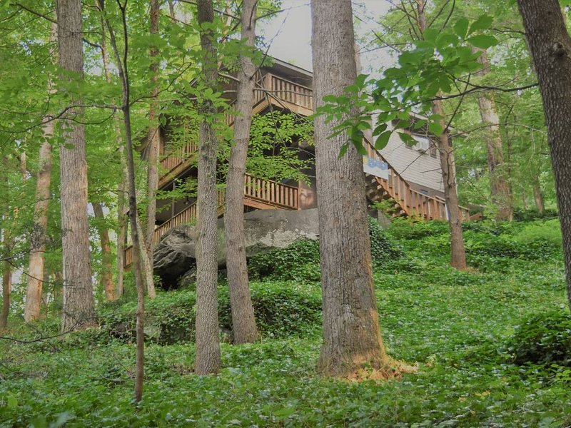 Nestled in the trees in Chimney Rock, location de vacances à Chimney Rock