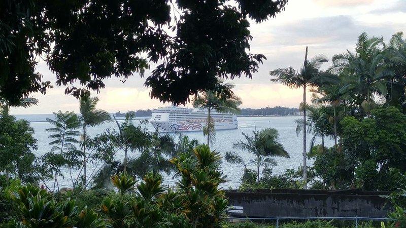 Watch ships passing from your lanai., alquiler de vacaciones en Pepeekeo
