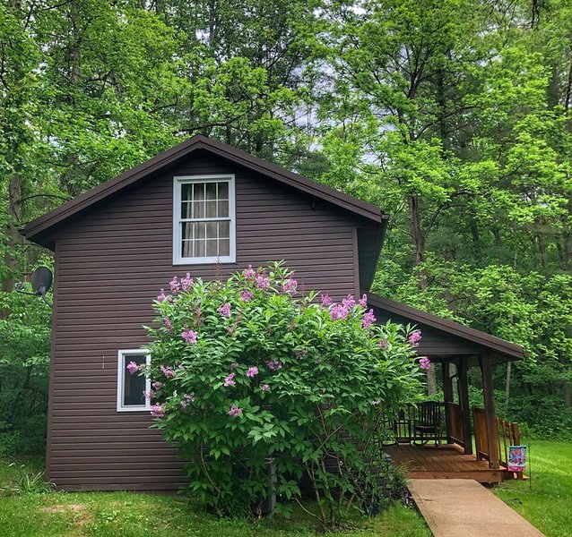 Cottage with rustic charm but modern amenities, holiday rental in New Straitsville
