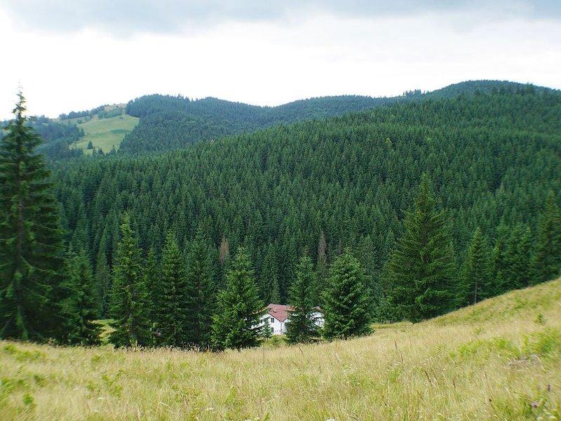 Rija Land, a rural retreat in Bucovina Mountains, alquiler vacacional en Pojorata