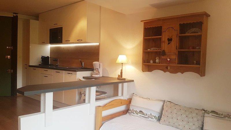 Vaste appartement de standing 2 Pièces. Plein sud au pied des pistes., vacation rental in Avoriaz