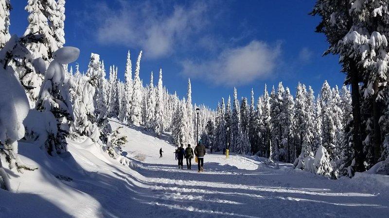 2 BD 2 BTH - Easy Ski in Ski out - Walk to Village, location de vacances à Idabel Lake