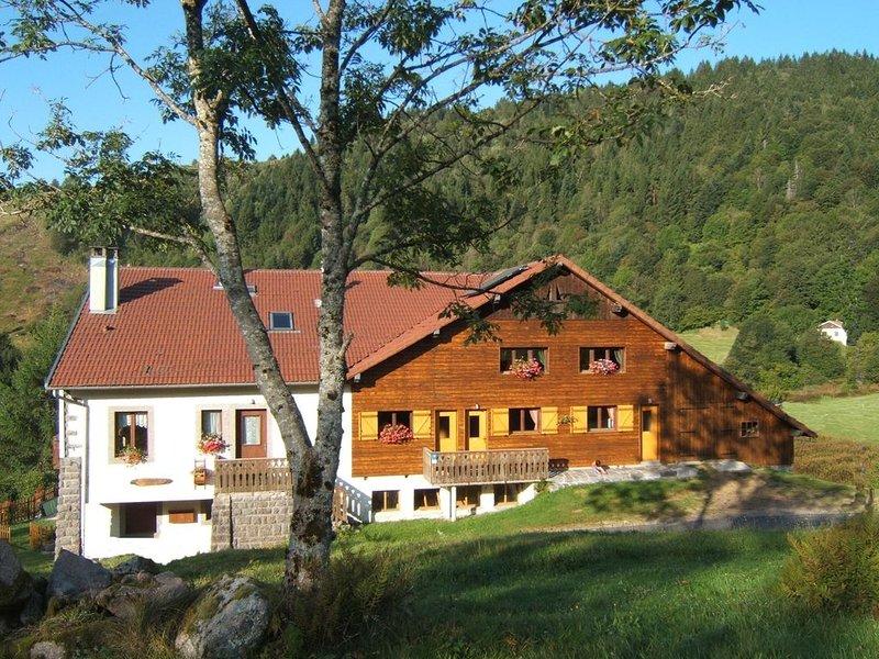 Appartement style chalet /  Calme assuré / Promenades sur place / WIFI GRATUIT, vacation rental in La Bresse