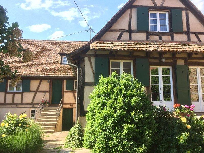 Gîte Alsace Les Chotzi's, location de vacances à Willgottheim