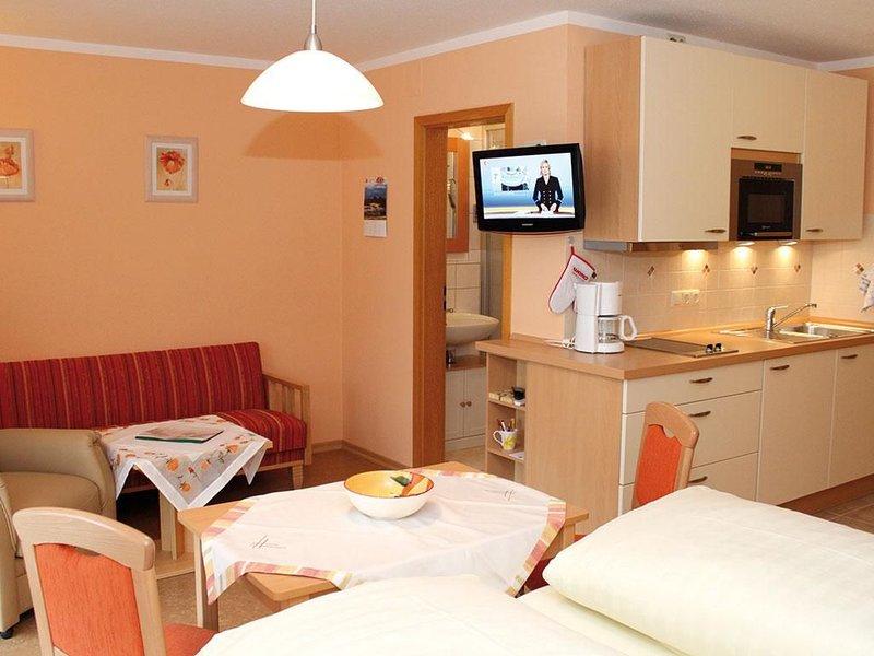 Kombinierter Wohn- Schlafraum A (30qm) mit Balkon und Küchenzeile-Typ A 7, EG