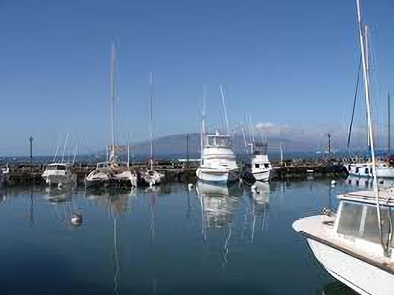 Lahaina harbor is the hub for snorkeling trips, ferry to Lanai and other boat to
