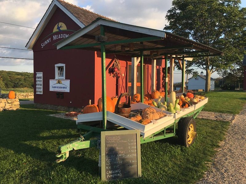 Sunny Meadow Farm stand (5 minutes up a scenic road).