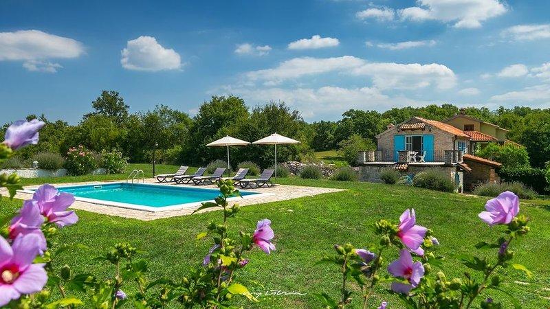 Beautiful villa immersed in nature near Porec, holiday rental in Tinjan