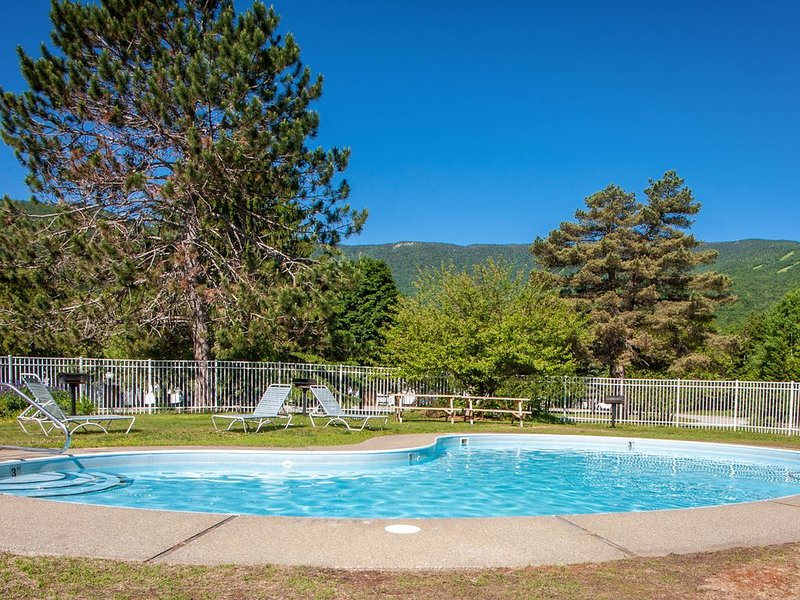 Modern condo w/12 tennis courts, 2 pools, & shared hot tub - 1 mile to Sugarbush, location de vacances à Warren