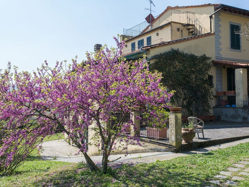 Independent loft on the Florence's Hills, holiday rental in Pratolino