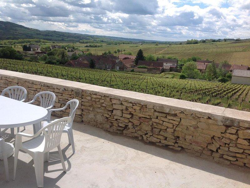 Au Pied des Vignes - house, holiday rental in Saint-Sernin-du-Plain