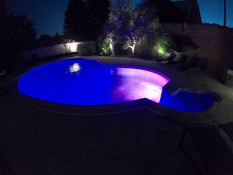 Ancienne maison de vin en centre ville avec piscine., vacation rental in Ladoix-Serrigny