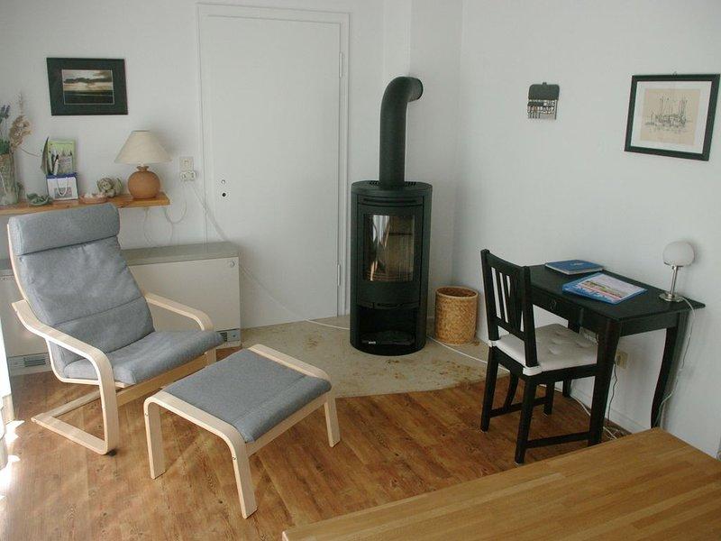 Stove corner living room