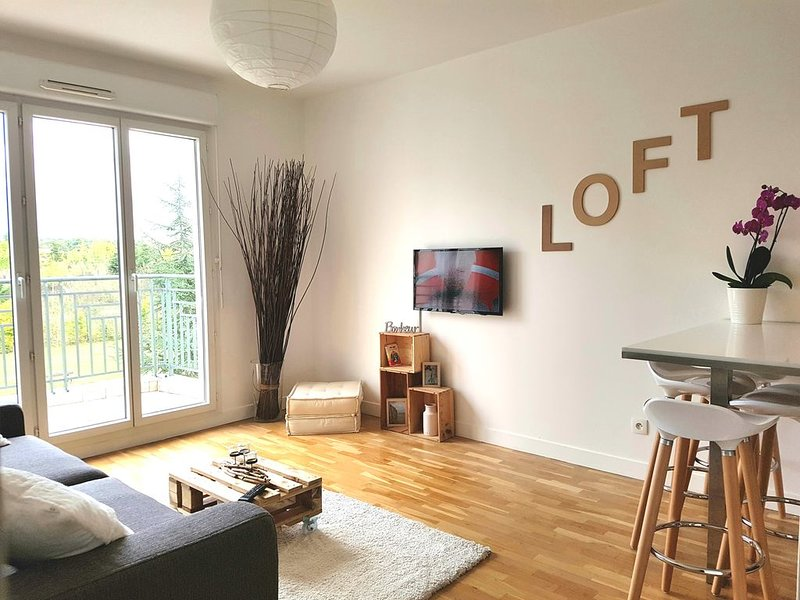 Sweet apartment in front of Disneyland's castel, vacation rental in Claye Souilly