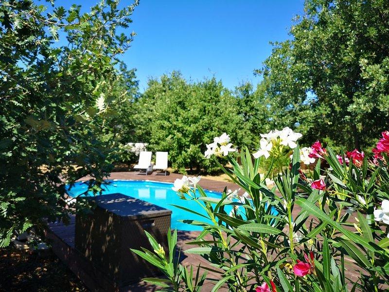 Jolie villa avec piscine privée, location de vacances à Joyeuse