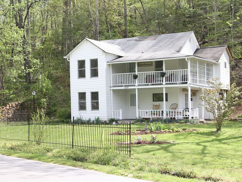 Remodeled 1907 Farmhouse - perfect for families, couples, or business travelers, location de vacances à Black Mountain
