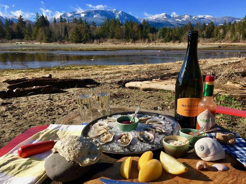 Or have a winter picnic the ***** Bay way with oysters!
