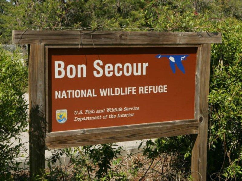 Camina, practica kayak, practica surf o simplemente disfruta de la vida salvaje en Bon Secour