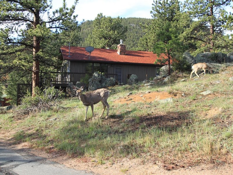 2 King Masters, Great Views, Walk To Town, Wildlife, Fireplace, aluguéis de temporada em Estes Park