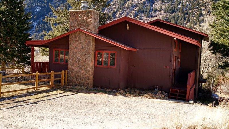 Silver Cloud Cabin - Pet Friendly! - Sleeps 12 - Last Minute Rates Negotiable!, vacation rental in Georgetown
