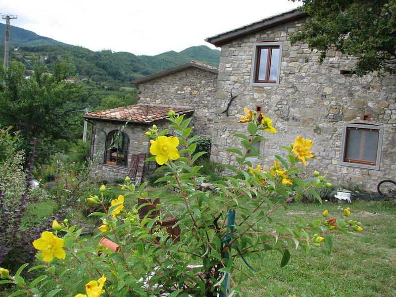 Antico fienile in pietra restaurato, con piscina privata e vista sulla valle, vacation rental in Caprese Michelangelo