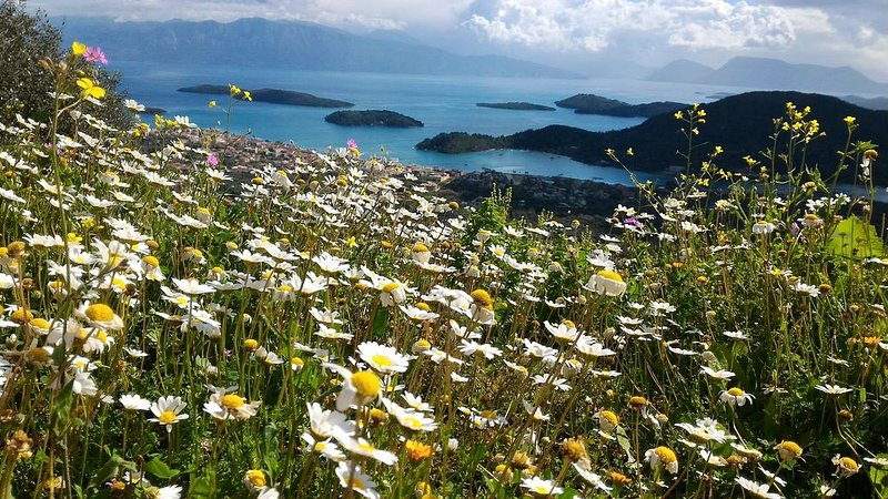 Spring flowers and the picturesque islands off the east coast!