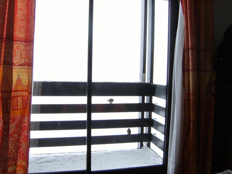 Balkongen och våra vänner fåglarna