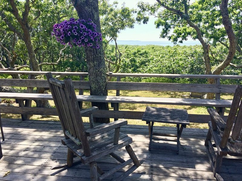 Spring Point Cottage With Gorgeous Sunsets Overlooking Vineyard Sound – semesterbostad i Aquinnah