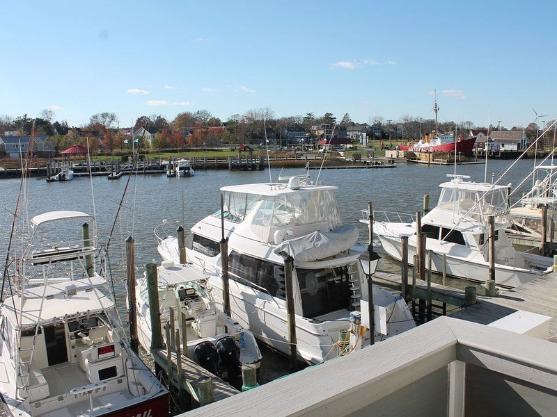 Waterfront, walkable to beach and downtown Lewes attractions, holiday rental in Lewes