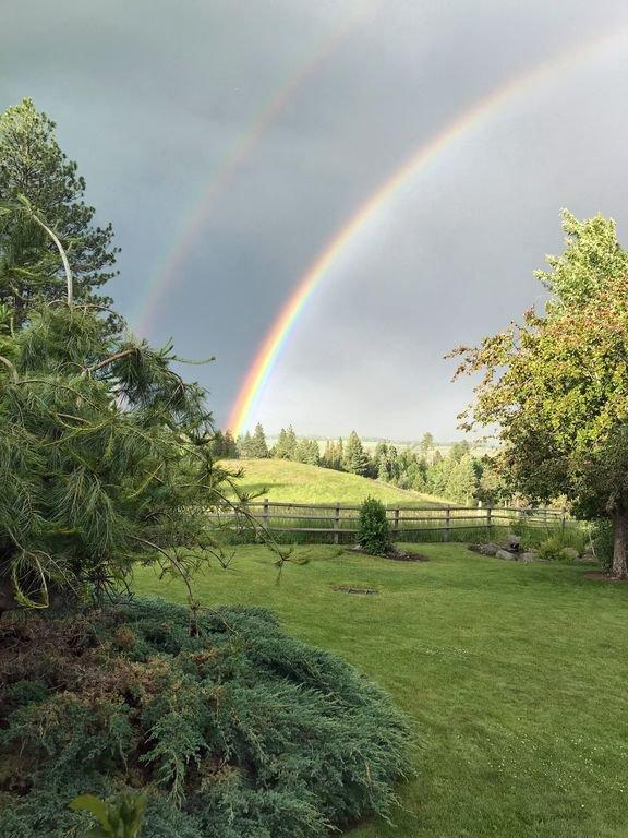 double rainbow~