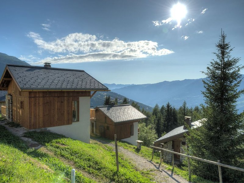 The chalet are is situated 300m from the village centre of Vallandry., holiday rental in Peisey-Vallandry