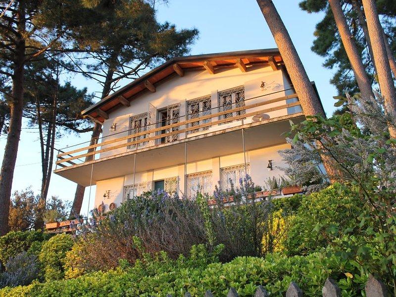 Villa immersa nel verde una vista meravigliosa sul lago e sul mare WIFI free *, alquiler vacacional en Massarosa