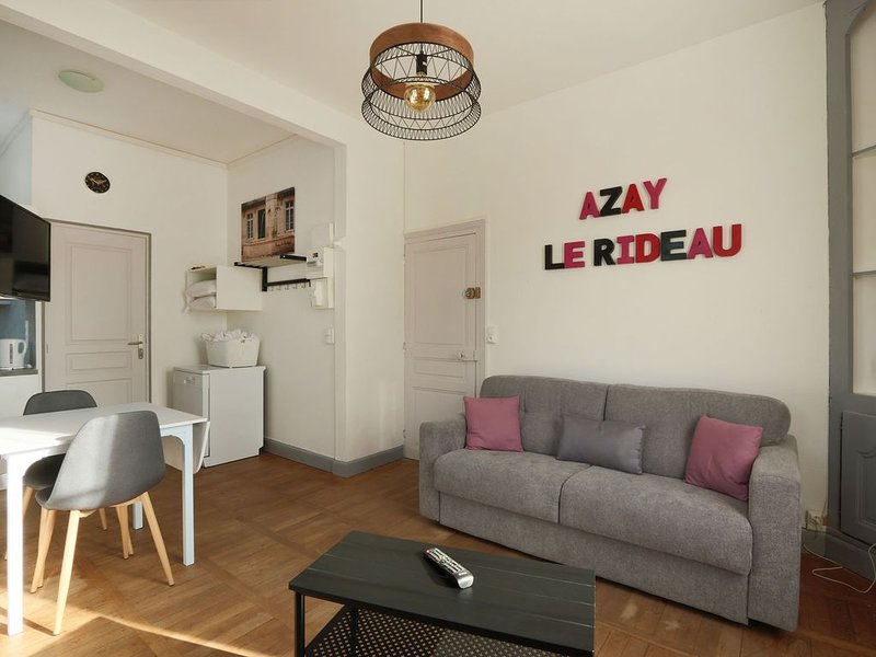 Joli studio aux portes du Chateau d'Azay le Rideau, holiday rental in Azay-le-Rideau