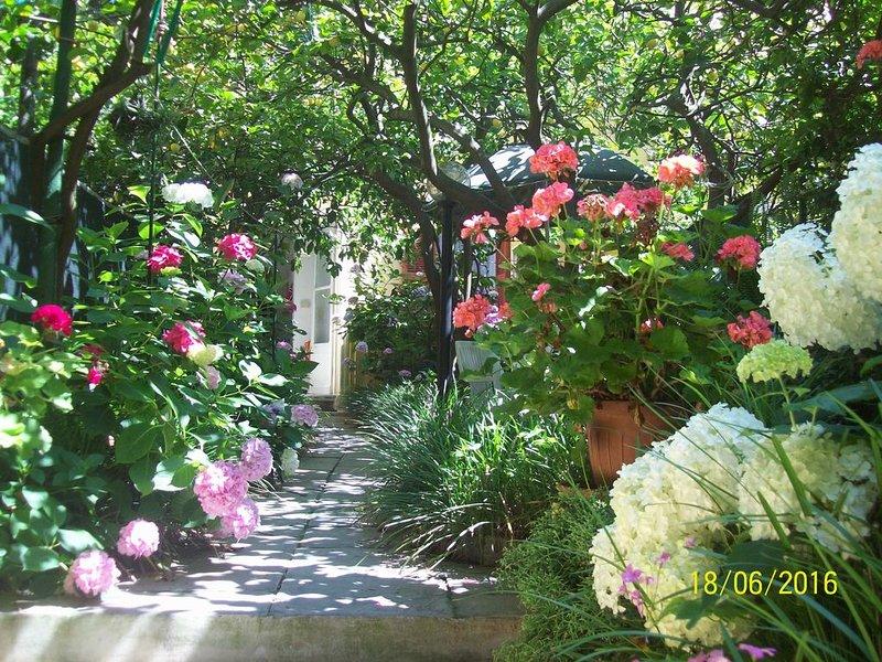 NEL CENTRO STORICO DI MONTEROSSO, CASA INDIPENDENTE CON GIARDINO, vacation rental in Monterosso al Mare