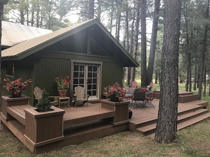 CABIN RETREAT-Come up and Escape the Heat -THREE story Tree House, holiday rental in Forest Lakes