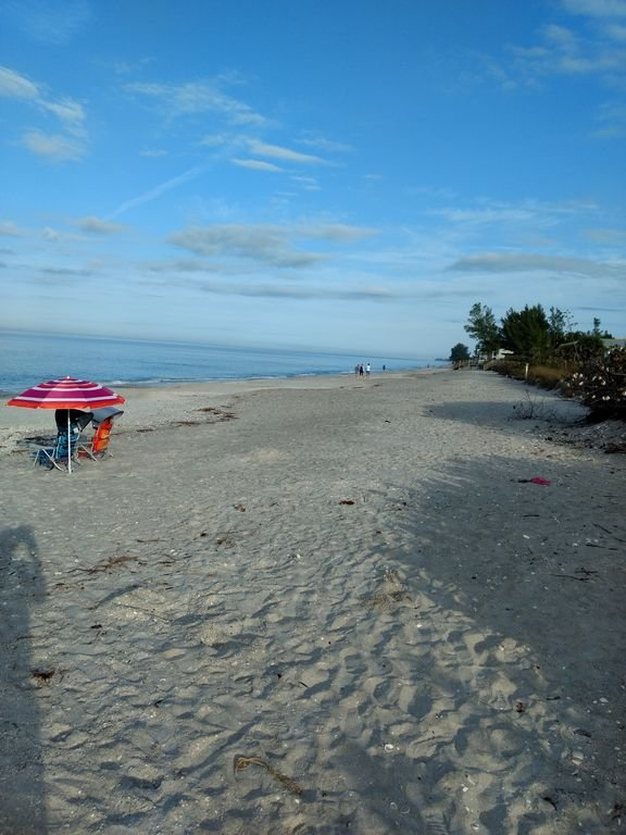 Englewood Beach located directly right across the street!