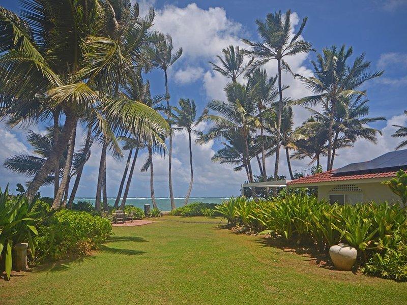 HAWAIIAN OCEANFRONT RETREAT AWAY FROM CITY LIFE, aluguéis de temporada em Punaluu