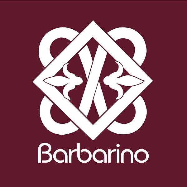 BARBARINO - Appartamento a 100m da  Ospedale Spedali Civili di Brescia, alquiler vacacional en Brescia
