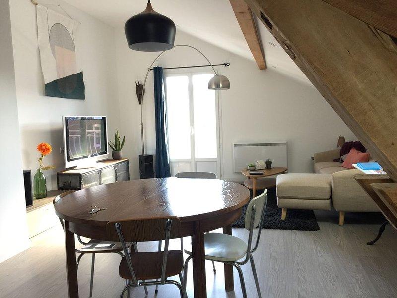F1 de 50 m2 refais a neuf lumineux calme et confortable, holiday rental in Cran-Gevrier