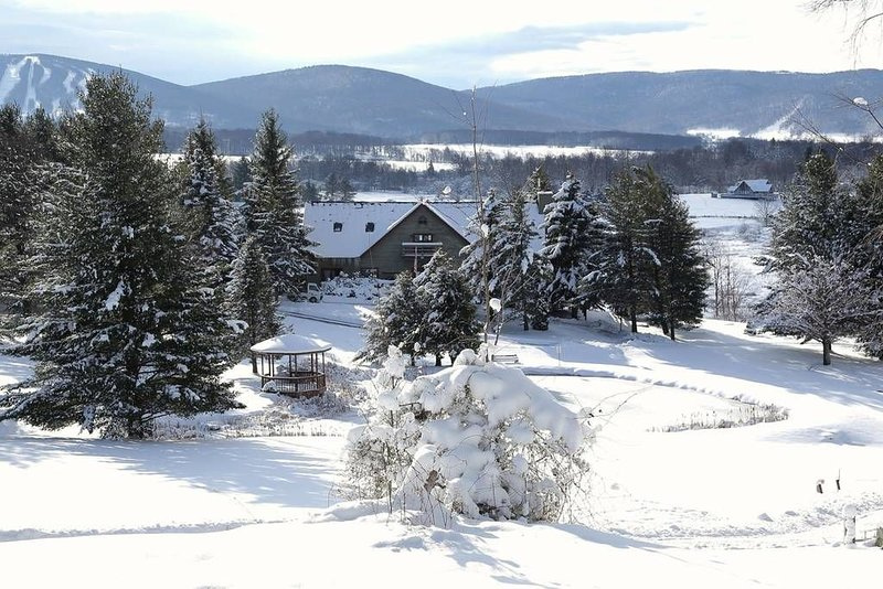 Cabin 19, 3 Hours From DC! Mid-week specials! Great hiking, skiing, MTB., holiday rental in Davis