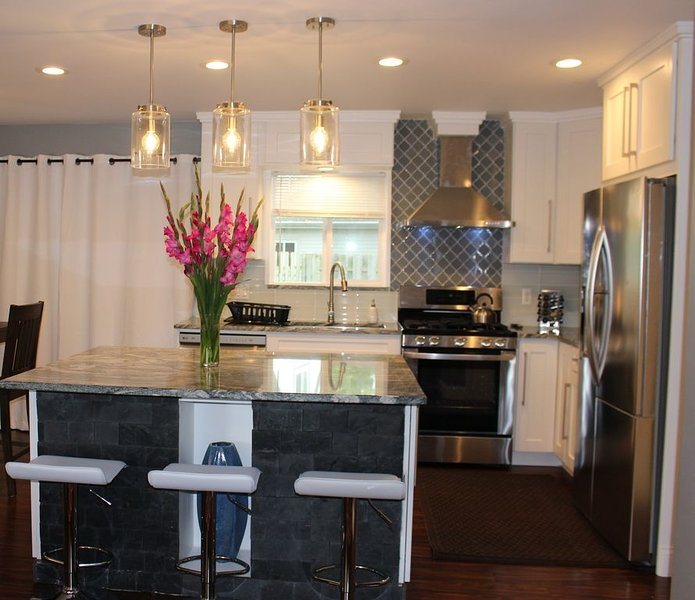 3 Miles to Downtown Ann Arbor and Michigan Stadium, Newly Remodeled 2019, holiday rental in Ann Arbor