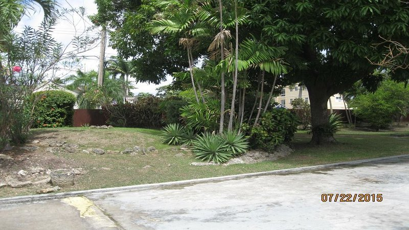 Villa Escape crotons, mangueira e várias plantas com flores.