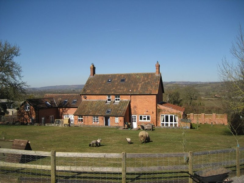 Somerset small holding - family friendly  - lots of small animals - plus hot tub, alquiler de vacaciones en Glastonbury
