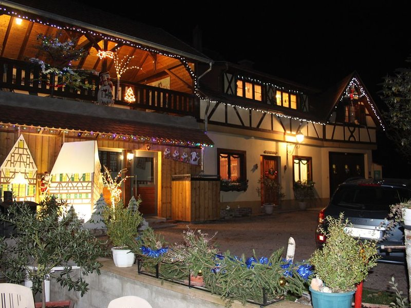 Alsatian charming house classified 'Gîte de France 3 * 3 épis', holiday rental in Albe