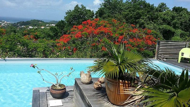 Villa de style creole au calme d'un beau jardin tropical., vacation rental in Le Vauclin